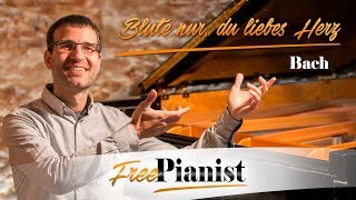 Blute nur, du liebes Herz - KARAOKE / PIANO ACCOMPANIMENT - Matthäus-Passion - J.S.Bach