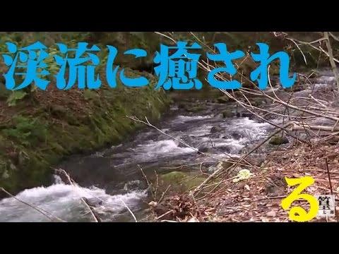 青森の渓流すばらしい。。。感動した!!せいらんの車中泊サバイバル編
