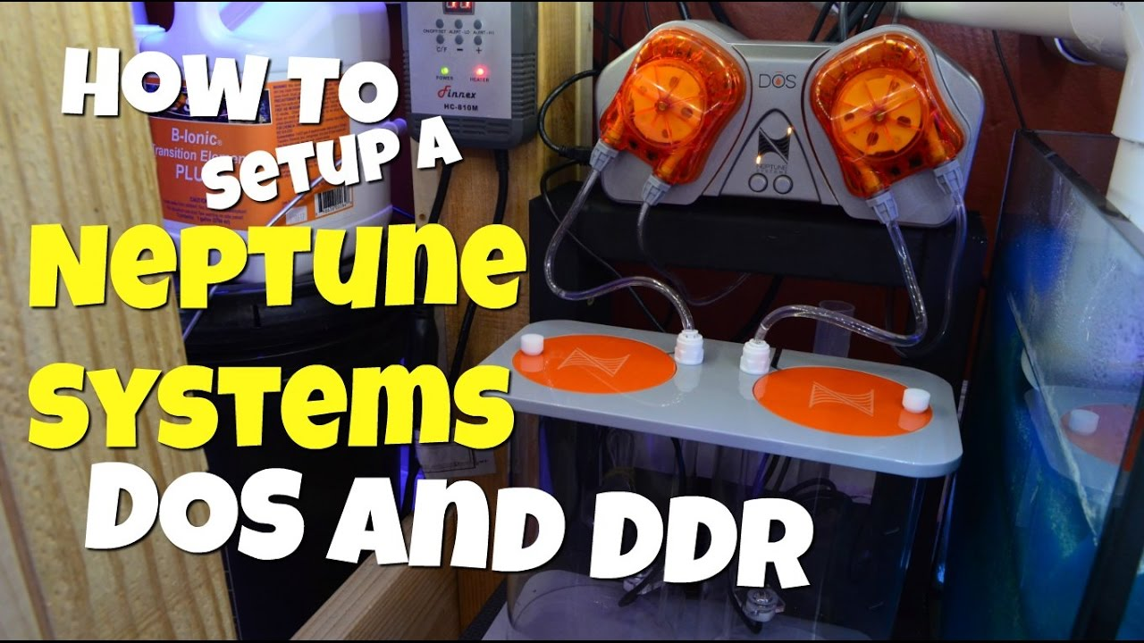 How To Setup A Neptune Systems Dos And Ddr Youtube