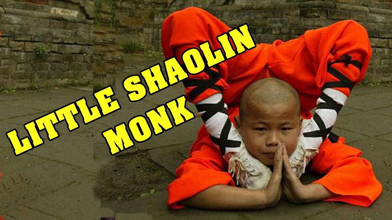 Download Wu Tang Collection - Little Shaolin Monk