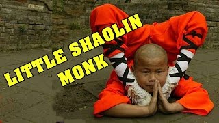Wu Tang Collection - Little Shaolin Monk