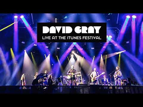 David Gray - Live At The iTunes Festival - The One I Love (Official Audio)
