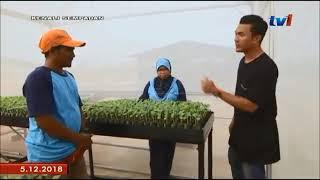 Rimbunan Kasih Bandar Baharu  kenali sempadan 5 dec 2018 episod 4