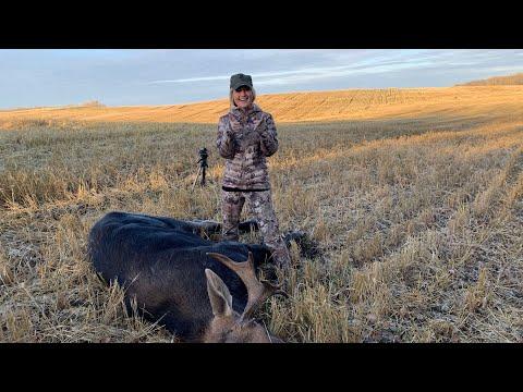 2019 Moose Hunt: 6.5 PRC (Browning Max Long Range)