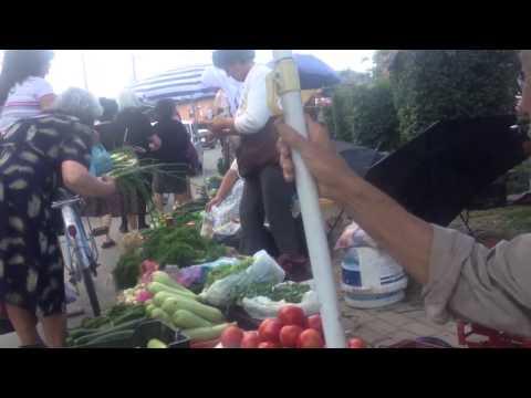 Albania Local Agriculture Alive
