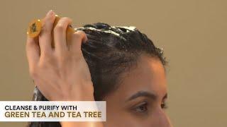 WOW Skin Science Green Tea and Tea Tree Anti-Dandruff Shampoo
