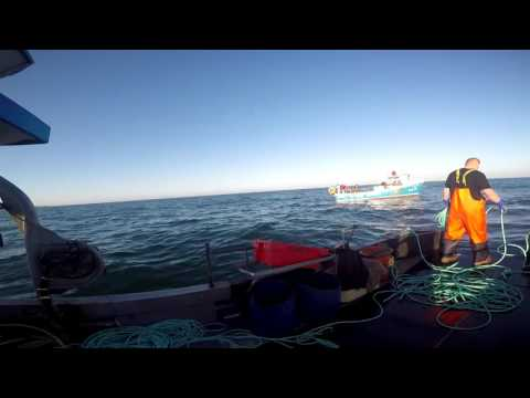 #20 Boat vlog pairtrawling with the Aurora PD16 and Freyja PD7