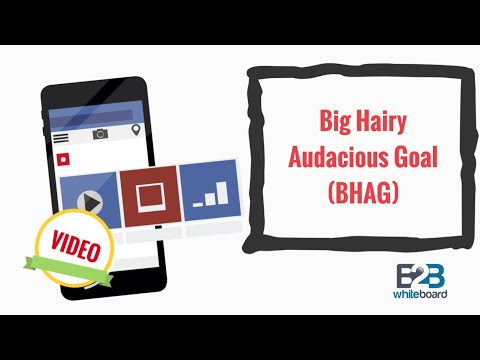 Big Hairy Audacious Goal (BHAG)
