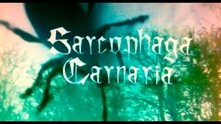 6V6 - Sarcophaga Carnaria (Videoclip)