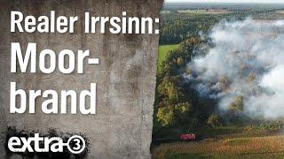Realer Irrsinn: Moorbrand in Meppen