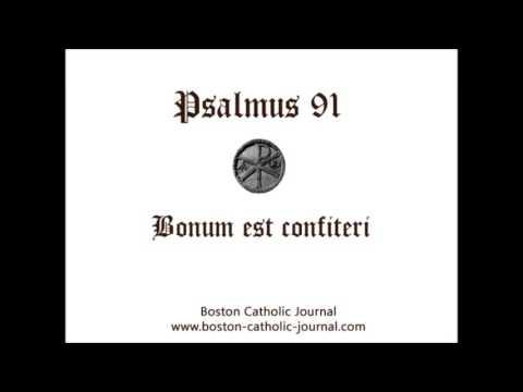 Psalm 91 In Latin