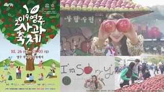 #한국기행#10월 축제 정보 #5 10월 #11월 축제…