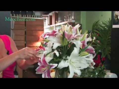 Hướng dẫn: Cách cắm hoa ly đẹp
