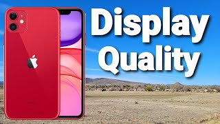 iPhone 11 Display Quality