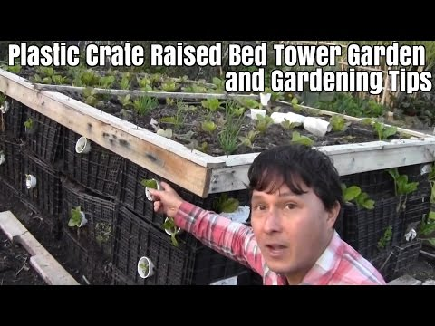 Plastic Crate Raised Bed Tower Garden and Gardening Tips