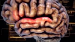 Тайны человеческого разума Как рождается мысль (2015) HD
