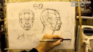 Обучение рисунку. Портрет. 3 серия: о планах и переломах формы