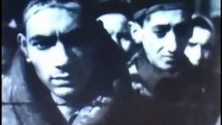 Auschwitz Concentration Camp Video