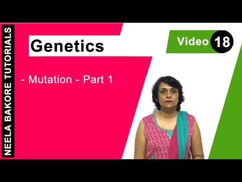 Genetics - Mutation Part 1