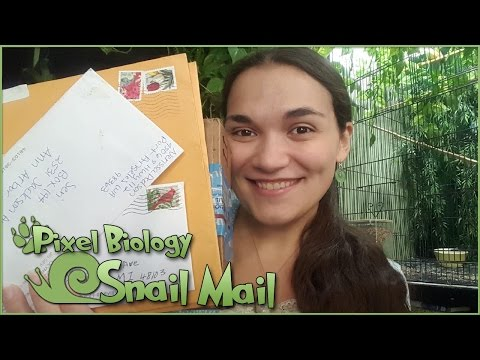 Wolves, Warriors, and So Much Kindness 🐌 Snail Mail Vlog!