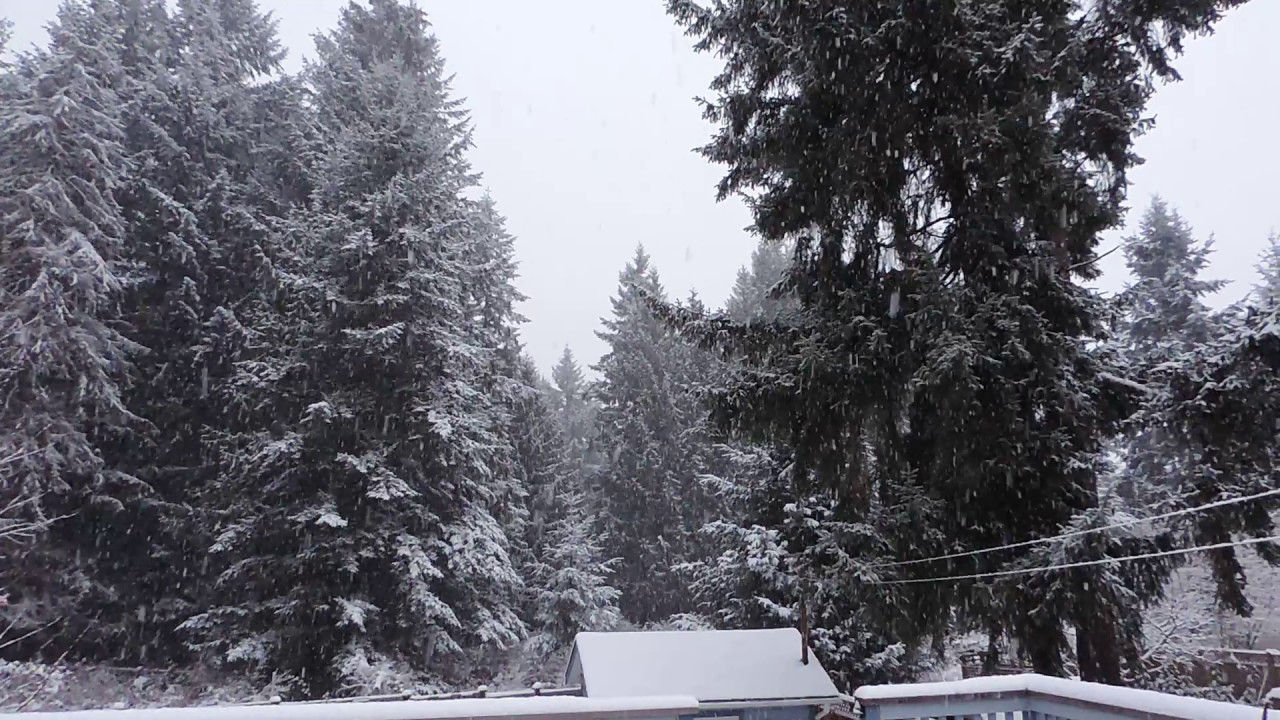 Vancouver Island Snow Dec 9 2016