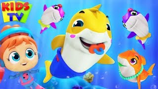 The Baby Shark Song | Nursery Rhyme for kid | Daddy Shark | Kids Apps | Baby Shark Remix