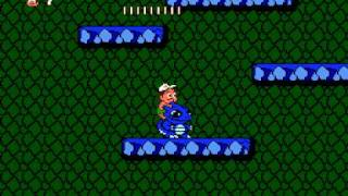 NES Hudson's Adventure Island 2 in 22:22.41 by red-crowned-crane & hellagels