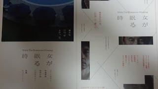 女が眠る時 2016 映画チラシ 2016年2月27日公開 シェアOK お気軽に 【映...