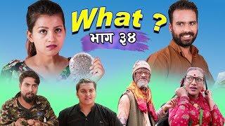 राजु मास्टरको WHAT Part 34 || 24  JULY || 2019 | Raju Master | Master TV