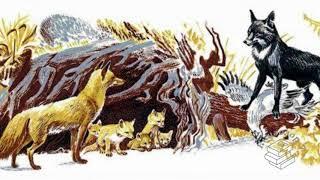 Рассказы о животных - Эрнест Сетон Томпсон
