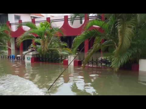 Chennai Dec'15 floods (Defence Colony)