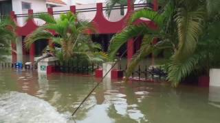 Chennai Dec'15 floods (Defence Colony)