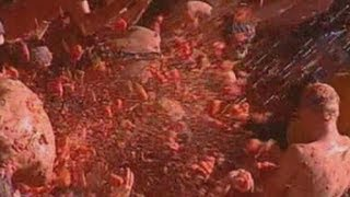 Fiesta time at Spain's La Tomatina tomato throwing festival