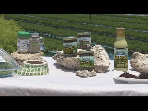 Hawaii Grown, Hawaii Made: Marine Agrifuture