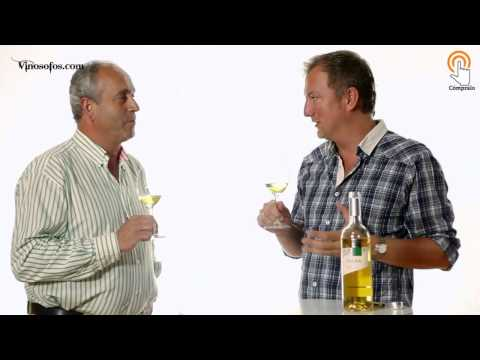 Videocata de Lecea Blanco Chardonnay