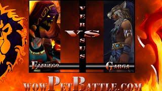 Grand Master Pet Tamer Gargra 6.0 Wow Wod