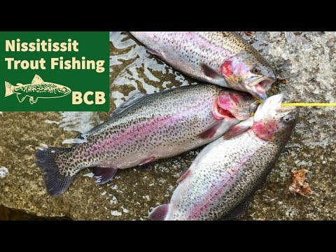 Spring 2019 Trout Fishing Nissitissit River In Pepperell Massachusetts