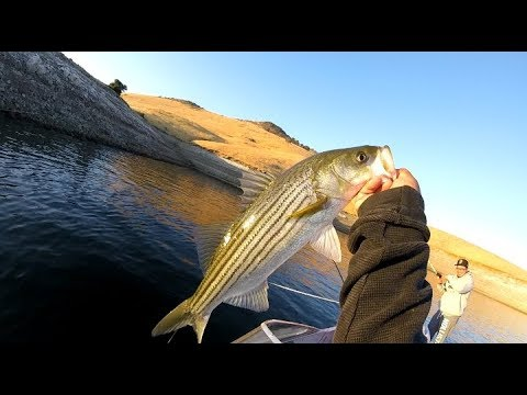 Top water striped bass san luis reservoir gopro session for San luis reservoir fishing report 2017