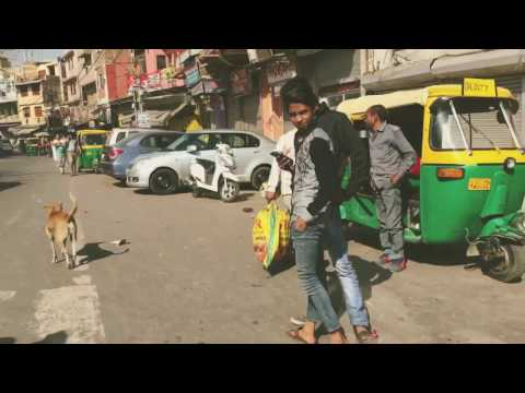 Travel Journal: Old Delhi, New Delhi, India - March 2017