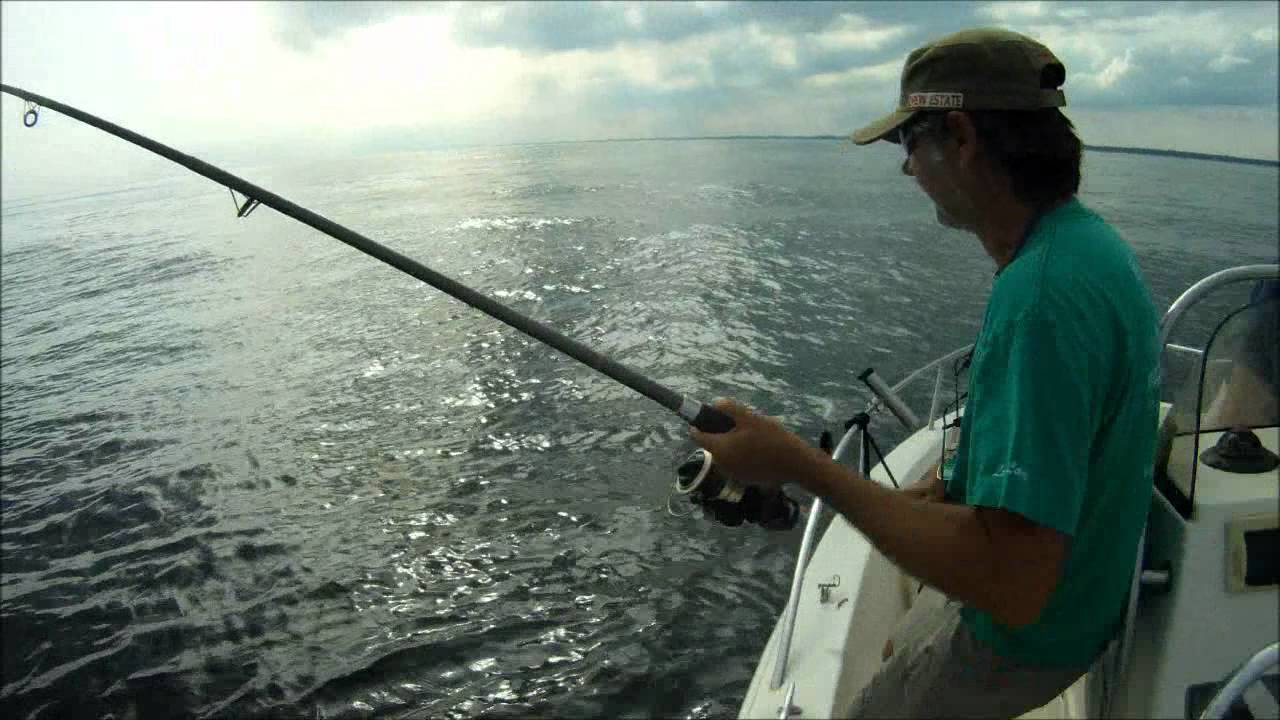 Fishing in long island sound youtube for Long island sound fishing report