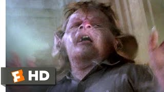The Witches (5/10) Movie CLIP - Hello Little Bruno (1990) HD