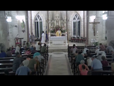 Holy Mass - The Assumption of the Blessed Virgin Mary