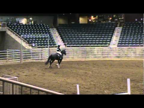 2011 OHSET Champion - Hunt Seat Over Fences
