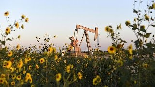 النفط الأمريكي يصدر إلى أوروبا - economy