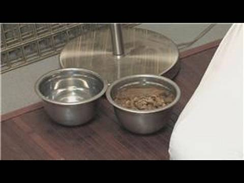 Dog & Puppy Care : How To Care For A Dog After Neutering