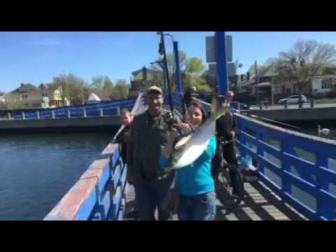 РЫБАЛКА FISHING SHEEPSHEAD BAY, BROOKLYN NY 05/01/16