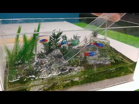 diy aquarium  fish tank | aquarius | diorama