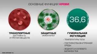 Анализ крови(, 2015-03-07T10:09:32.000Z)