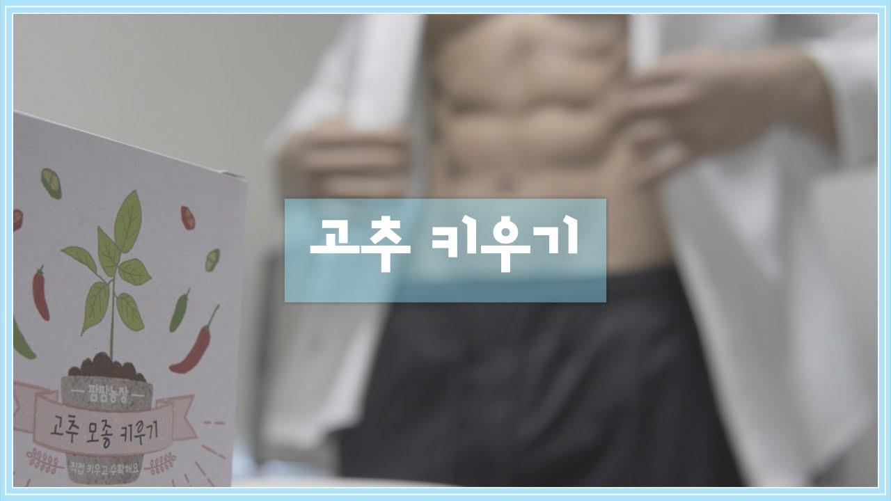 새해 맞이 고추 모종 키우기 feat.꽃휴지