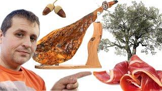 These TREES Make the World's Best Ham|Jamón Ibérico de Bellota